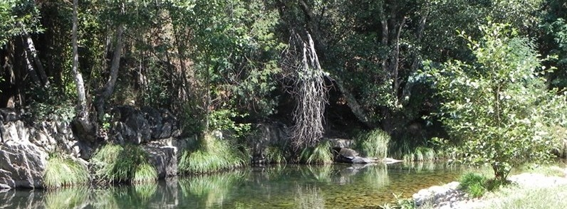 river_small
